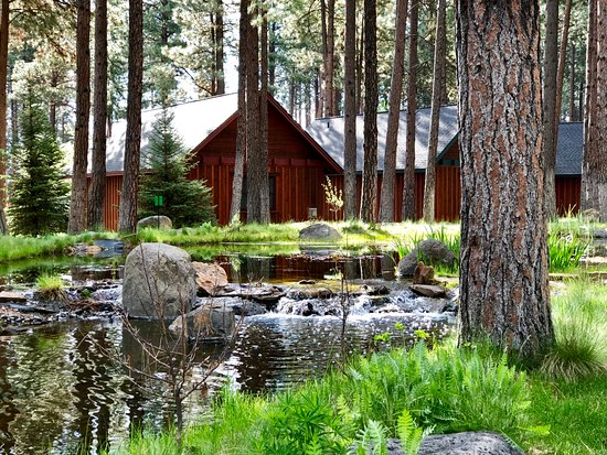 Five Pine Lodge & Spa: A small, artificial creek creates a sense of serenity.