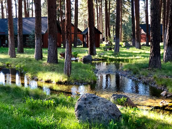 Five Pine Lodge & Spa: An all around beautiful setting.
