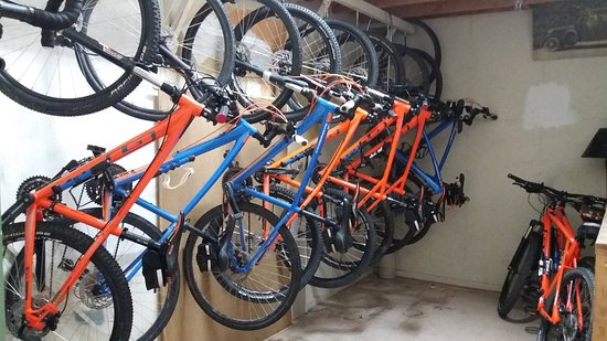 YHA Nelson by Accents: Bike Hire and Indoor Bike Storage available