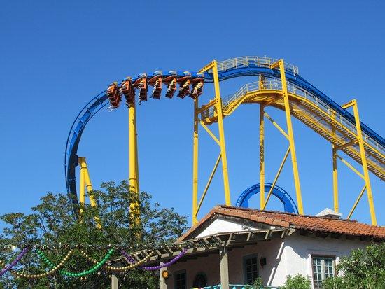 Goliath Picture Of Six Flags Fiesta Texas San Antonio Tripadvisor