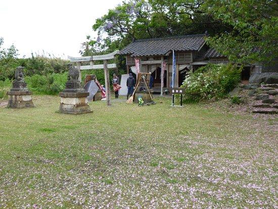 Shiiyajinyaato