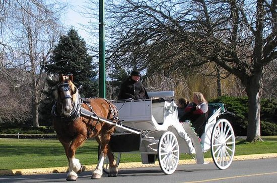 Victoria Carriage Tour che include