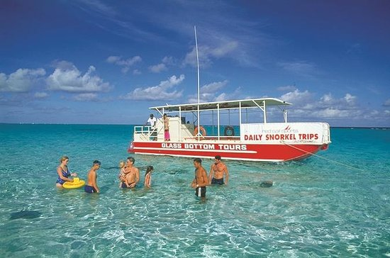 Stingray City Glass-Bottom Boat Tour...