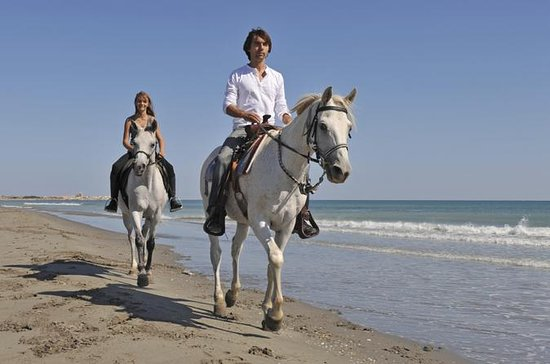 Horseback Riding and Beach BBQ in St...