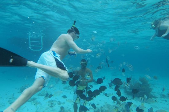Stingray City, 2-Stop Snorkeling...