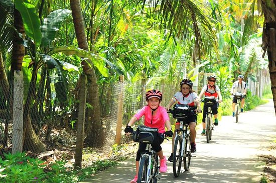 Full-Day Mekong Delta Bike Tour from...