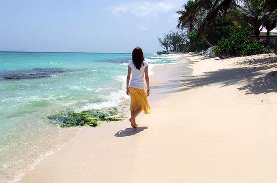 Excursión turística por la isla de...
