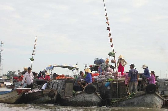 Il delta del Mekong di un'intera