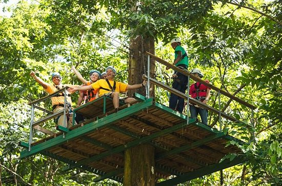 Adrena-Line Zipline Canopy Tour at...