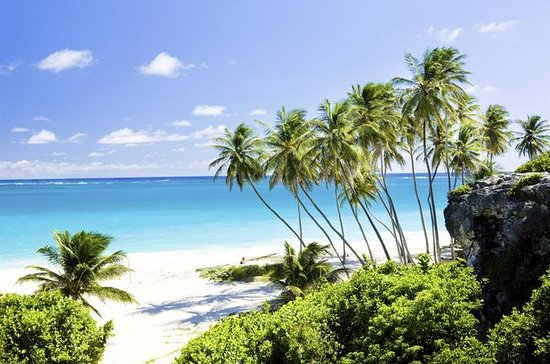 Barbados Private Custom Island Tour