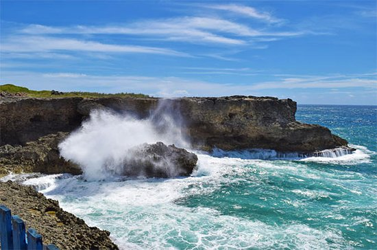 Beautiful Coastal Sightseeing Tour of ...