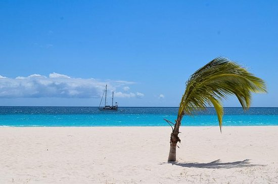 Barbados Paradise Sightseeing Tour
