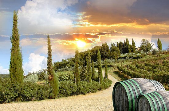 Half-Day Afternoon Chianti Tour from...