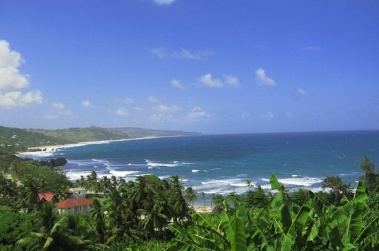 Barbados 360 Full-Day Island Tour