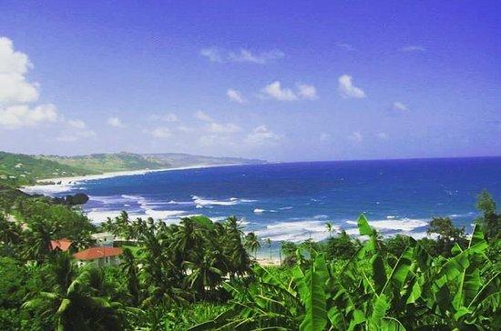 Barbados Shore Excursion: 360 Island...