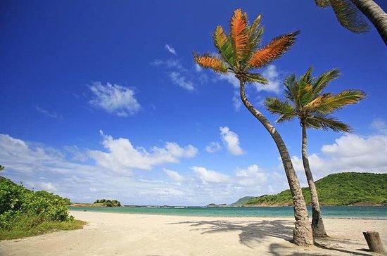 South Island Adventure Tour