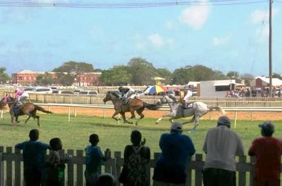 Horse Racing Experience at the...