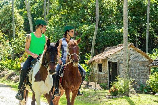 18ème siècle Estate Horseback Ride