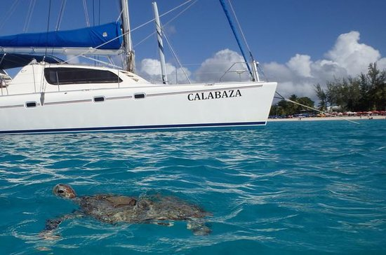 5-Hour Small-Group Catamaran Cruise...