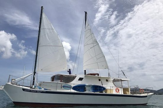 Golden Dragon Catamaran Sailing Day ...