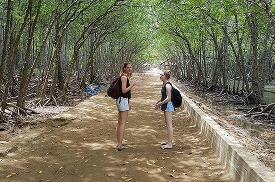 Can Gio Mangrove Forest and Monkey...
