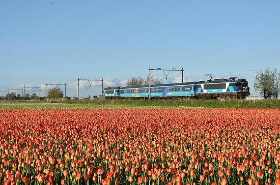 Amsterdam Sightseeing Dinner Train...