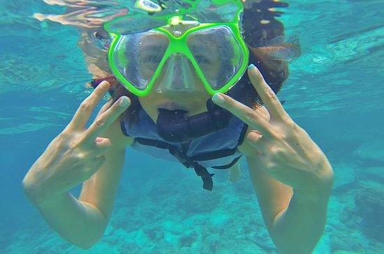 Intera giornata di snorkeling a Racha
