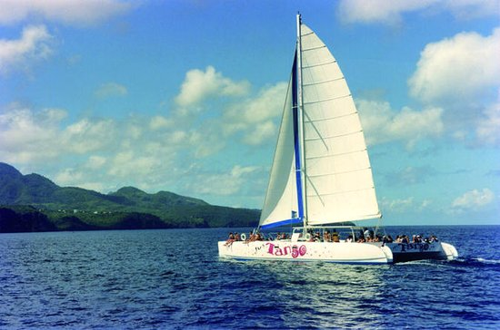 Private Catamaran Day Cruise out of
