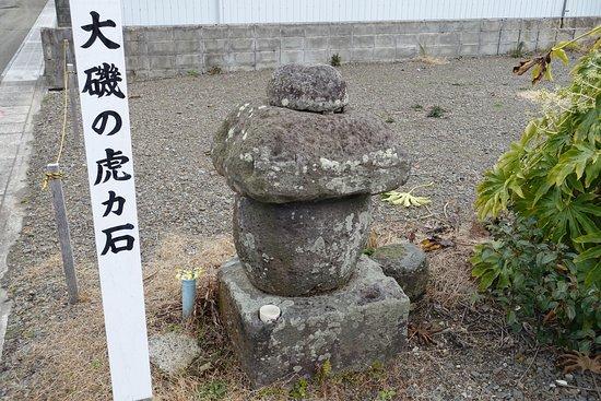 Toragaishi