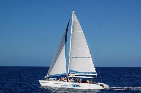 Private 3-Hour Catamaran Sunset
