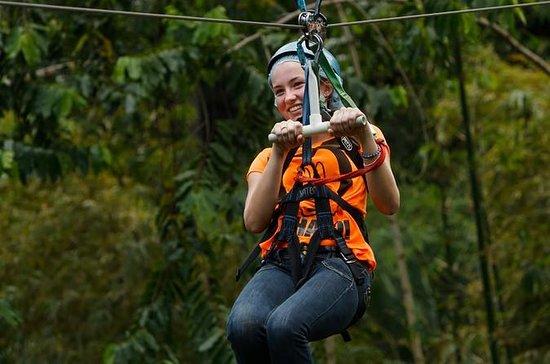 Rainforest Adventures Adrenalin Tour...