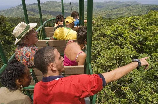 RAINFOREST AVENTURES AERIAL TRAM PICK...