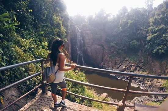 Full-Day Khao Yai National Park y...