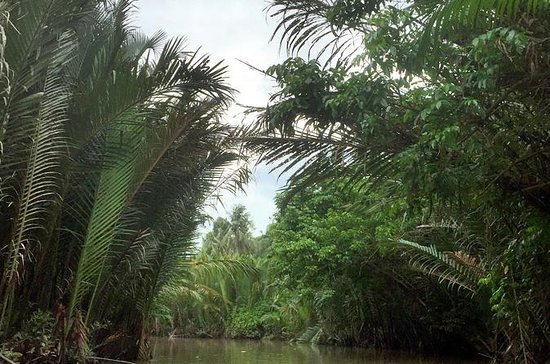 Mekong Delta in Ben Tre full day private tour from Ho Chi Minh City: Mekong Delta Ben Tre 1 day tour