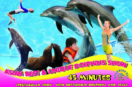 Dolphins Bay Phuket Billet d'admission