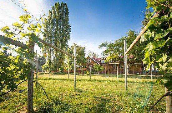 Cowichan Valley Wine Tasting: Explore...