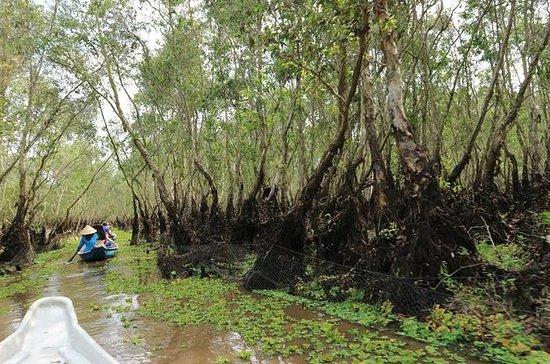 Niet-toeristische Mekong Delta ...