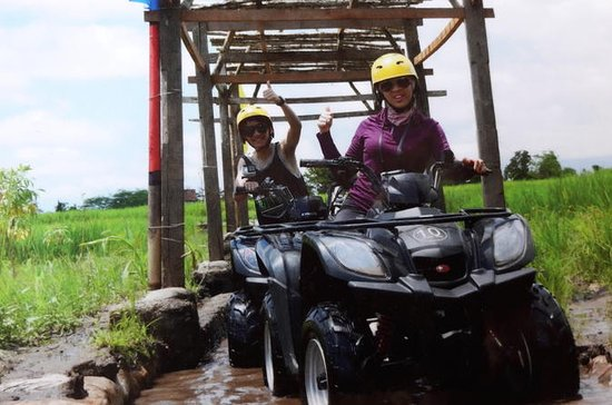 Bali Green ATV Ubud Ticket Mejor...