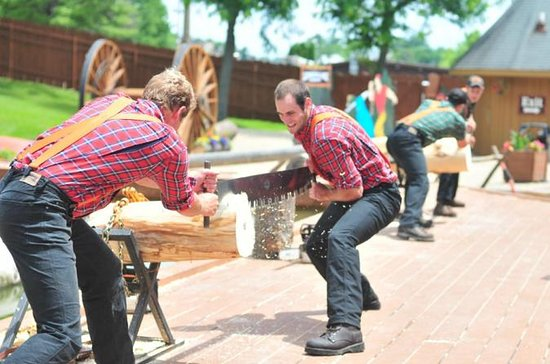 Admission to the Dells Lumberjack Show