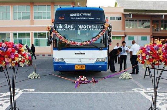 Sleeping Bus to Huay Xai, Chiang Rai, Chiang Mai Thailand including...
