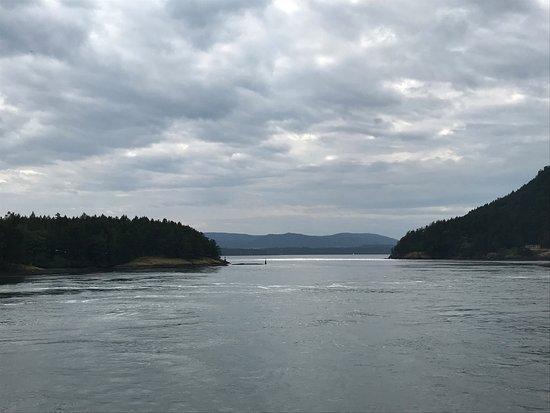 Tsawwassen, Canadá: Mooi punt als de ferry de baai invaart