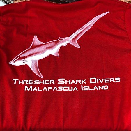 Thresher Shark Divers: photo5.jpg