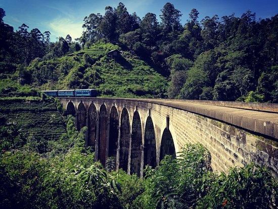 Sri Lanka Brothers Tour: Famous Nine Arch Bridge!