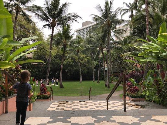 The Royal Hawaiian, A Luxury Collection Resort: Garden early morning