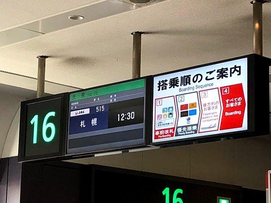 Japan Airlines (JAL): 搭乗便