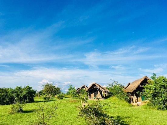 Lake Mburo National Park, Uganda: Lazy camping tents