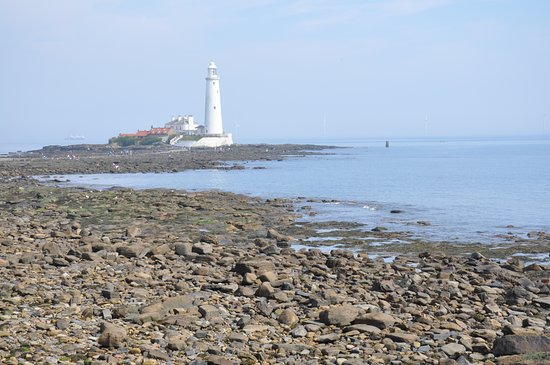 St. Mary's Lighthouse and Visitor Centre: View of St Mary's Lighthouse