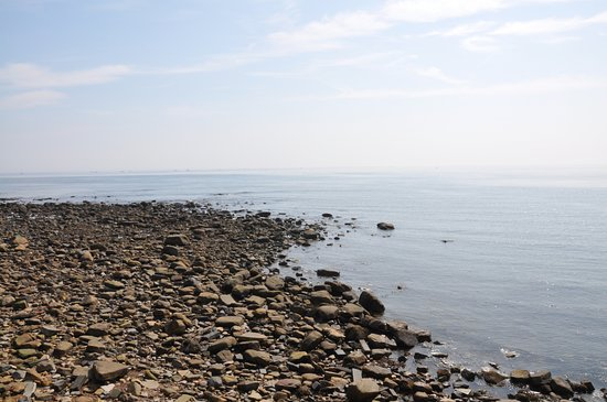 St. Mary's Lighthouse and Visitor Centre: Rocks en route to the lighthouse