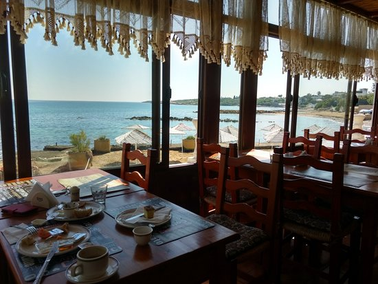 Agios Georgios, Kypros: View from the breakfast table.