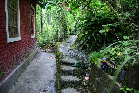 Mayal Lyang Homestay Picture